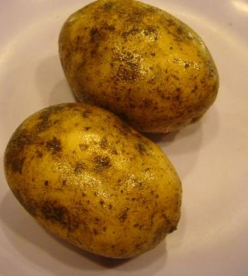 Russet Potatoes (5s)