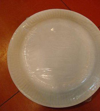 Plastic Plates 9″ (10s)