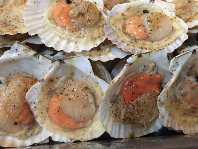 Half Shell Scallop 1kg (8-9pcs)