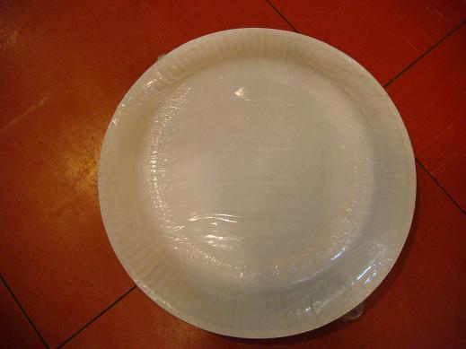 Paper Plates 9″ (50s)